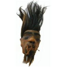 Large Bearded Ecuadorian Shrunken Head